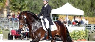Cincuenta ganaderías compitieron en Segovia